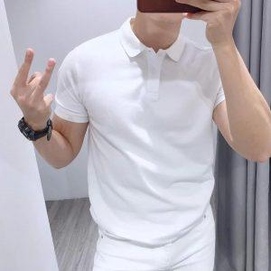 áo polo trơn nam trắng